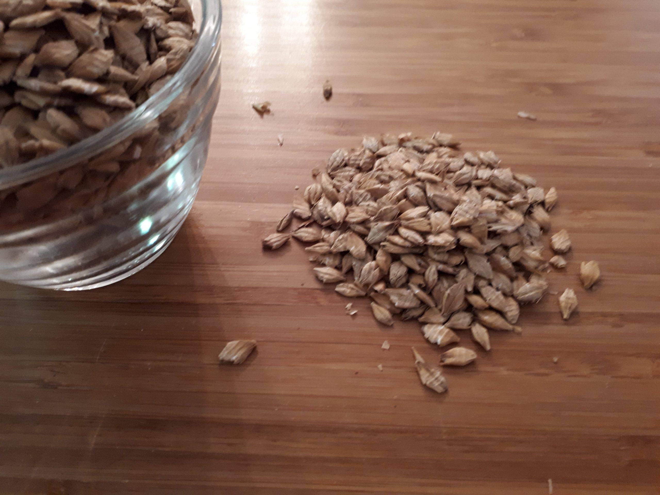 Flaked Barley   Orge en flocon