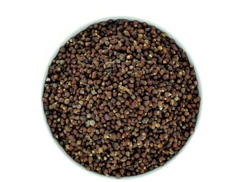 8571 Paradise Seed 5 grams